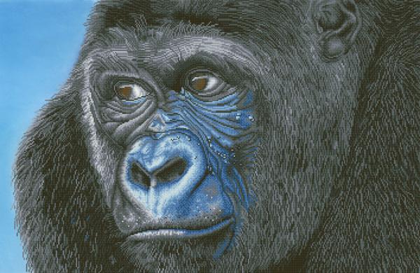 D.Dotz Kibali Western Lowland Gorilla 100x65cm