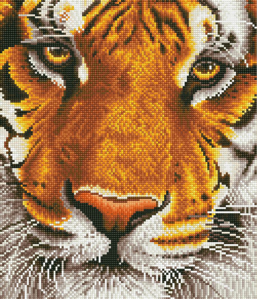 D.Dotz Bengal Magic 36x42cm